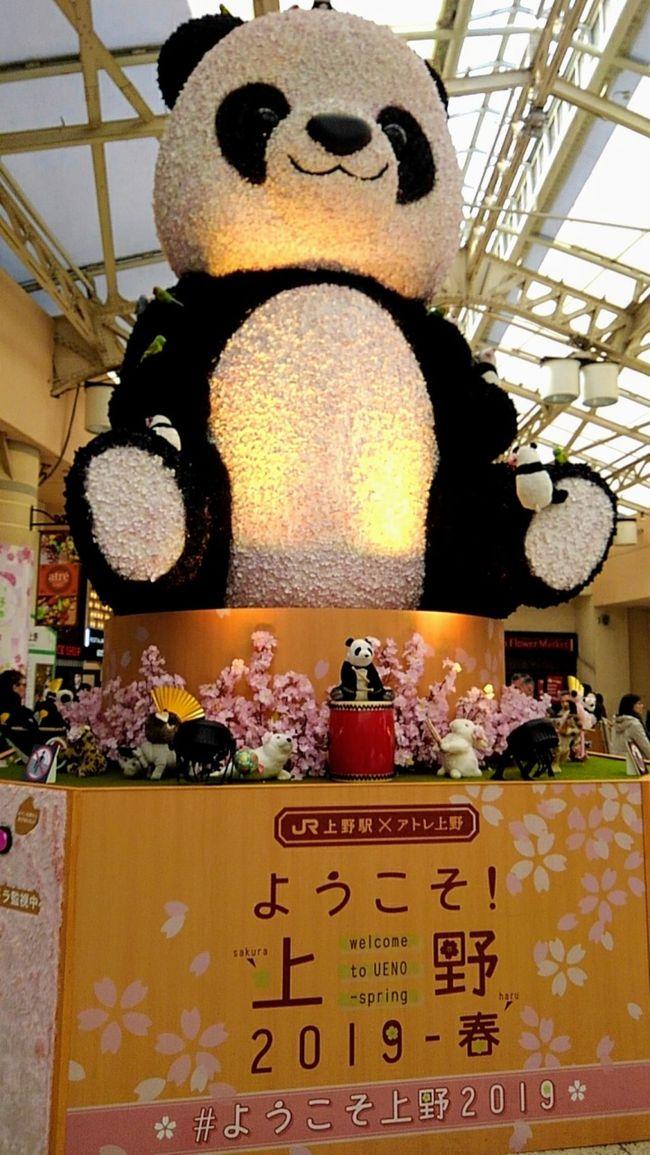桜満開の上野公園と美術館・博物館を楽しみました。