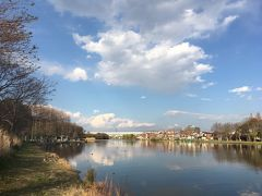 春の水元公園