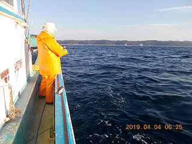 春の海<br />しかし花寒<br />海の方も季節の変わり目<br />釣り物も変わり目