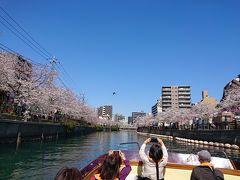 大岡川桜クルーズ。野毛の洋食。横浜公園のチューリップ。