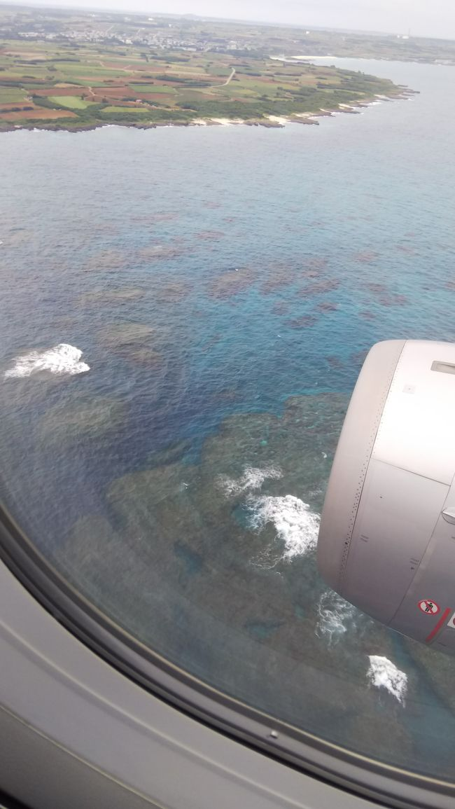 旅客用空港として再開港し、ジェットスターが就航した下地島空港。<br />お得なチケットを買って、宮古島の青い海を楽しんできました。<br />…行きの便の驚くような遅延はありましたが、楽しい旅でした。<br />その記録です。<br />