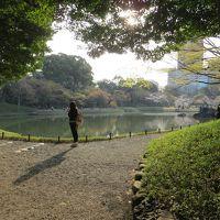 文の郷 文京区内の桜を追って 小石川後楽園