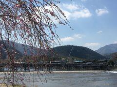 春の京都 桜求めて百鬼夜行 Vol.3 嵐山!桜見てんだか、人見てんだか… 帰宅後もオマケ付き(*_*)