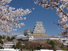 ちょっと早かったけど姫路城へ花見に出かけてきました