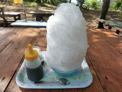 登山+18きっぷ+温泉.ごちゃまぜ旅・その1.月例登山報告「高尾&小仏城山」。