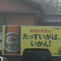 下調べなしの高知・松山旅行!行き当たりばったり、車なしの旅