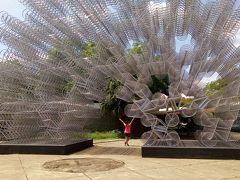 ブラジルトラベル12(サンパウロの広大の公園を訪問)