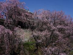春感じる東信濃へ ~別所温泉と上田城跡~