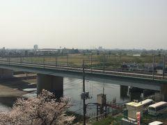 花見がてら多摩川から洗足池公園ぶらり散歩