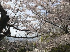 春を満喫したい!高松に行ってきました!!