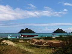 Hawaii� キラウエア火山を見たい夫&ガーリックシュリンプを食べたい妻が選んだオプショナルツアー