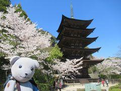 春の山口桜散策&食べ歩き2019(防府のハートの桜付き)