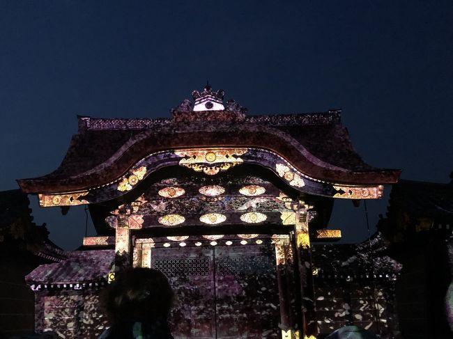 春の京都旅行、修学旅行以来の京都観光は伏見稲荷から始めます!外国人にも大人気の千本鳥居を観て、お昼はたかばしの人気店でラーメン、夜は二条城桜まつりを観に行きました。