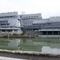 京都国際会館に用務で行き,途中で東寺も訪れた.ホテル横の路地は京風家並みだった.