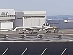 新政府専用機 B777-300ER