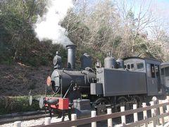 名古屋港から明治村に行き蒸気機関車に乗る