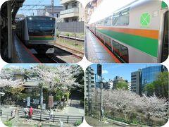 日帰り青春18きっぷで桜を愛でる旅(1)湘南新宿ライン(逗子から新宿まで)