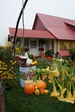 紅葉で黄金に輝く秋のポーランド堪能旅行 【11】ザリピエ~深い霧に包まれた花柄の村はおとぎ話の世界~