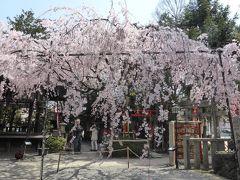 京都一人散歩 2019春