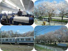 日帰り青春18きっぷで桜を愛でる旅(2)湘南新宿ライン(新宿から久喜まで)