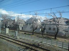 日帰り青春18きっぷで桜を愛でる旅(3)東北本線(久喜から終点宇都宮まで)