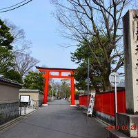 2019春 『そうだ!京都、行こう!』パワースポット下鴨神社〜鴨川先斗町までを散策《1日目-2》