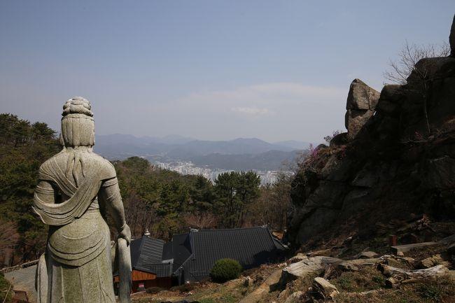 2019年3月エアプサンで行く韓国・盈徳、安東、大邱、釜山の旅(4)釜山金剛公園で桜を見てきました。