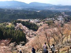 吉野山の桜を見に行ってみよう