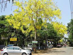 Chiang Mai生活116(4月) Baan Kang Wat など