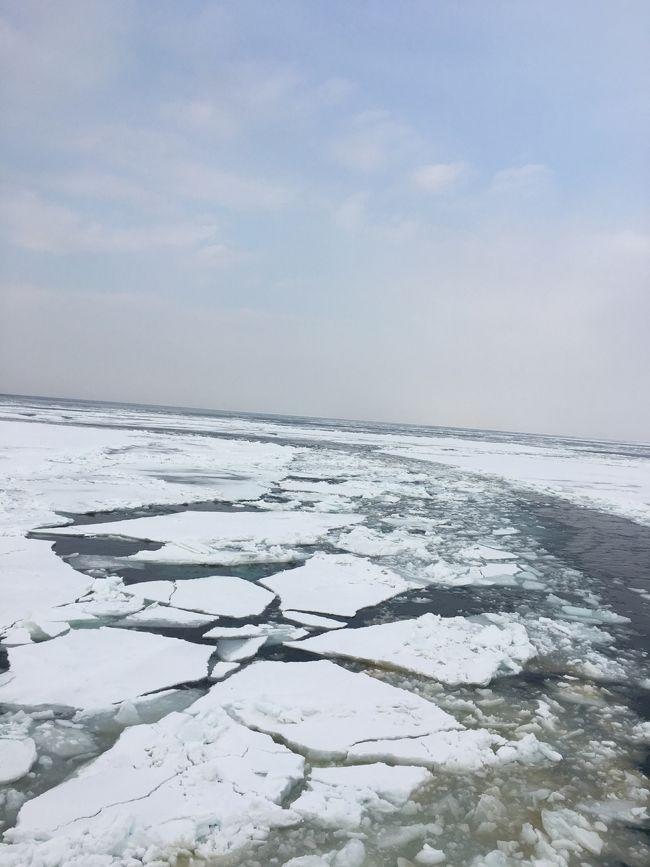 中年女子、流氷を見に行く!北海道のたび2泊3日②
