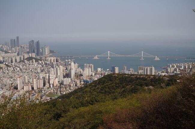 釜山(プサン)南浦洞に3泊して観光旅行。<br />韓国は始めてのシニア夫婦です。<br /><br />全行程は以下です。<br />4/6(土)成田 10:50 発 JAL957便、フライト2 時間15 分、金海 13:05 着(時差0)山の公園で桜見物と市街展望、松島スカイウォーク、Aventree Hotel 3泊<br />4/7(日)龍宮寺、梵魚寺、チャガルチ市場、釜山タワーで夜景<br />4/8(月)慶州観光ツアー(石窟庵、仏国寺、古墳など歴史遺跡、良洞村)<br />4/9(火)金海 14:10 発 JAL958便、フライト2 時間5 分、成田 16:15 着<br /><br />本旅行記は前半(4/6~7)の、釜山観光を紹介<br />後半(4/8~9)の慶州観光は以下<br />https://4travel.jp/travelogue/11482007<br /><br />旅行用カメラは以下<br />http://yajimak2000.livedoor.blog/archives/5950846.html