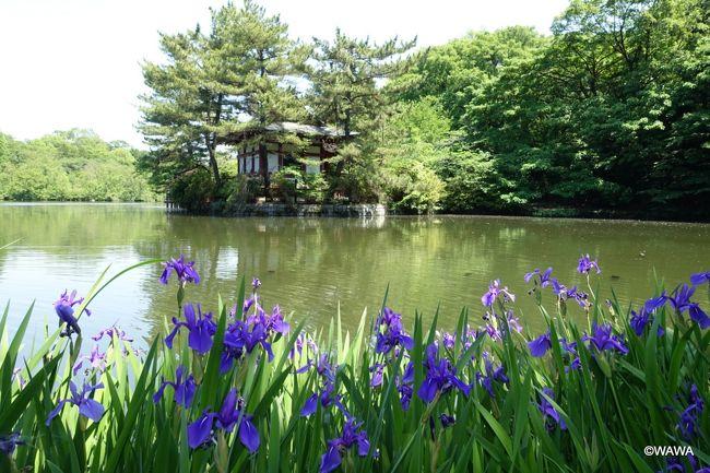 「石神井公園ふるさと文化館・分館」を初見学した後に、石神井公園や周辺の神社仏閣を散歩しました。<br />
