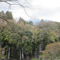富士宮 お参りだっ!やきそばだっ!白糸の滝だっ!…富士山だぁ!
