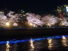 陸から川から、大阪の桜満喫ツアー