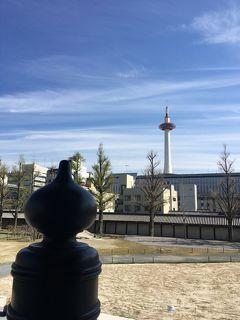 京の週末 *:.。.:*お東さんで昼食を ゜( n´∀`)n゜*:.。.:*