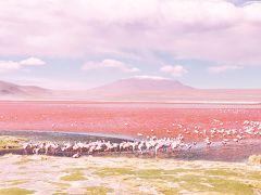 南米旅2019 その⑥2泊3日チリ抜けツアー参加でチリまで行ってみます