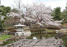北陸8名城のさくら(2)・・安宅関跡と芦城公園(小松城三の丸跡)を訪ねます。