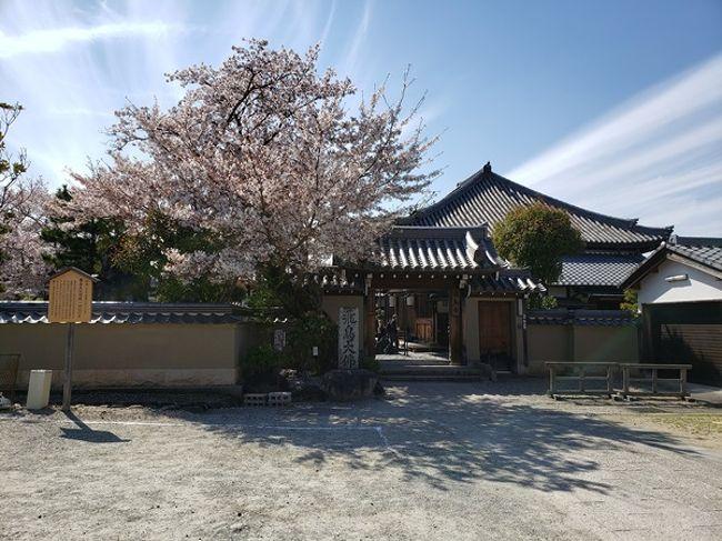 小学校以来のとき、オリエンテーリングで巡った以来の飛鳥。<br />大人になって来たのは始めてで、かなりうれしい。<br />バス移動だったので、あまりあっちこっちに行けなかったけれどかなり満足な1日になった。<br />次回は、今回いけなかったところも回ってみたい。<br />非常に魅力的な所だった。<br />桜もまだまだきれいに咲いていたというのも、ポイントが高かったのかもね。