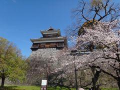 母娘・FDAで熊本へ 桜と熊本城