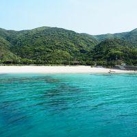 行ってきました奄美大島!行けるのか加計呂麻島!?(1日目)