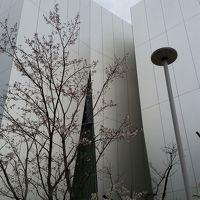 花のお江戸は曇り空