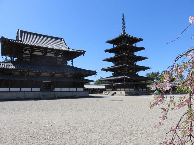 世界遺産の法隆寺を見に行きました。<br />お天気に恵まれて青空に映えてきれいでした。<br />30年前にいったときと同じで美しい姿を見せてくれました。