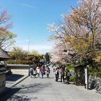 お久しぶりの京都 2日目