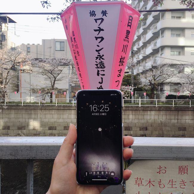 WANNAーONE<br /><br />1月27日の解散から<br />ロスが続く中・・・・<br /><br />個人活動が始まったメンバーは<br />日本でのペンミも<br />どんどん始まり・・・<br /><br />やっとパク・ジフンのペンミのチケットをゲット!<br /><br />昨年の香港以来・・・<br />生ジフンです!!