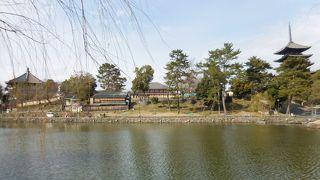 奈良の世界遺産を歩く.1 奈良公園から春日奥山原生林