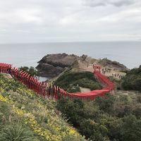 角島大橋と元乃隅神社からの下関ステイのち、秋吉台から大和ミュージアムへ