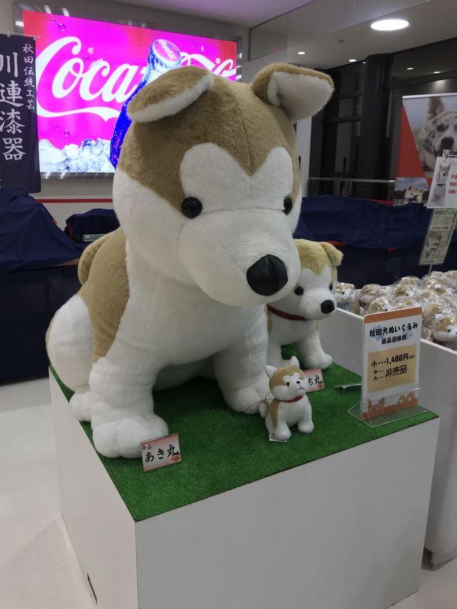4月中旬、秋田・青森への旅(後編)~のっけ丼と稲庭うどん+バター餅~