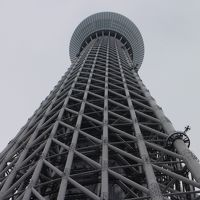 Tokyo SkyTree見える辺りへサイクリング 4月/2019