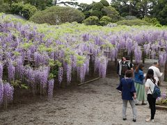 埼玉の旅行記