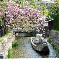 京都 MIHOMUSEUMと美食ランチの旅